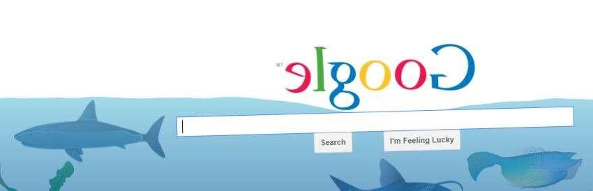 underwater google